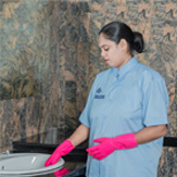 Home Apartment Domestic Cleaning Service in Sri Lanka